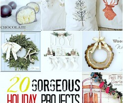 20 favorite holiday projects