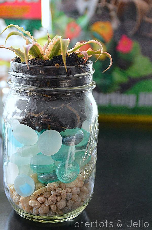 Diy Mason Jar Succulents And Spring Mantel