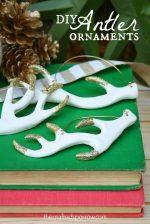HAPPY Holidays: DIY Antler Ornaments!