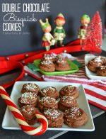 Double Chocolate Bisquick Cookies!