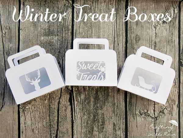 winter-treat-boxes