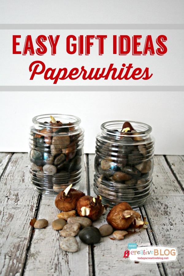 Easy-Gift-Ideas-Paperwhites