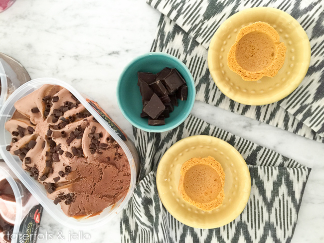 breyers.gelato.tatertotsandjello-5