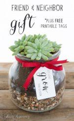 Happy Holidays: Friend and Neighbor Gift idea