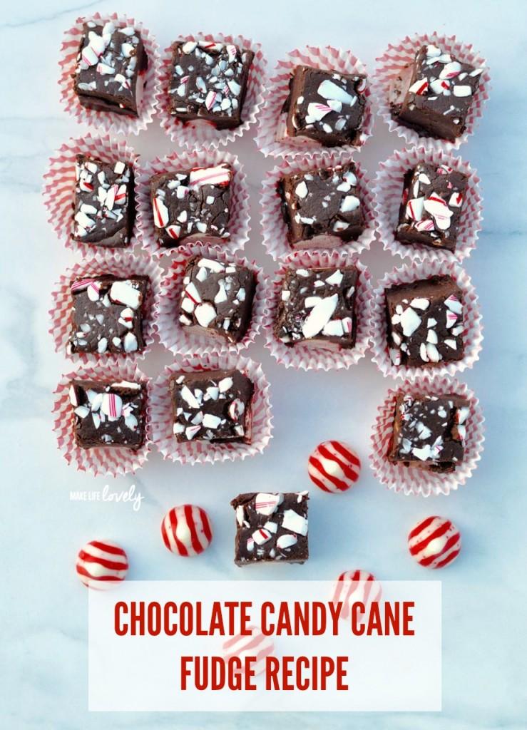 Dark-Chocolate-Peppermint-Fudge-Recipe-2