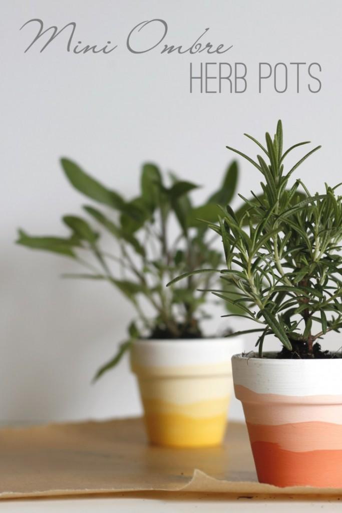 Mini-Ombre-Herb-Pots-pin