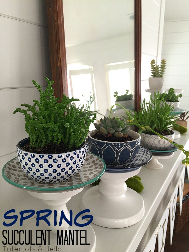 Spring Potted Succulent Mantel