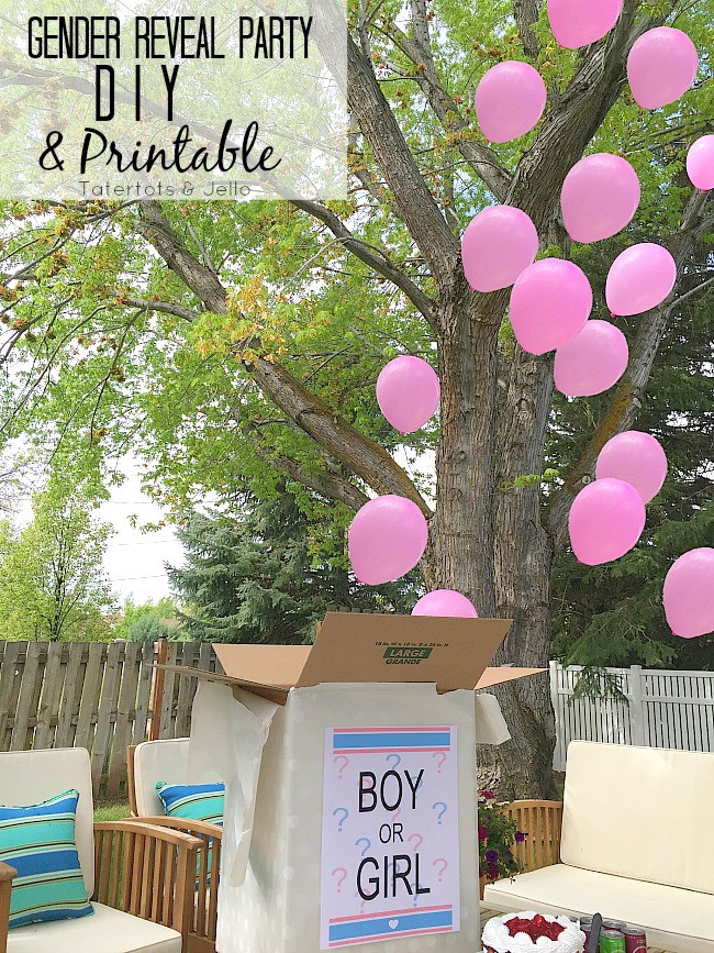 Gender Reveal Party Printable and DIY Idea