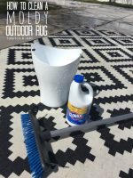 How to Clean a MOLDY Outdoor Rug