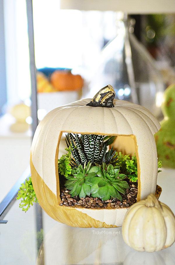 Easy & Elegant Faux Pumpkin planter tutorial at TidyMom.net