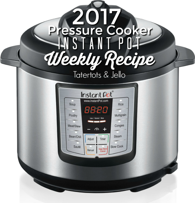 pressure cooker instant pot recipes for the year. A weekly recipe using my pressure cooker for you.