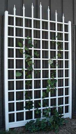 10 Outdoor Privacy Screen and Pergola Ideas