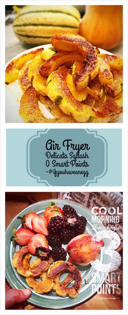 air fryer recipes with weight watcher points
