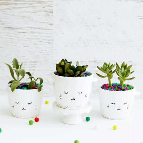 sleepy kitty planters DIY