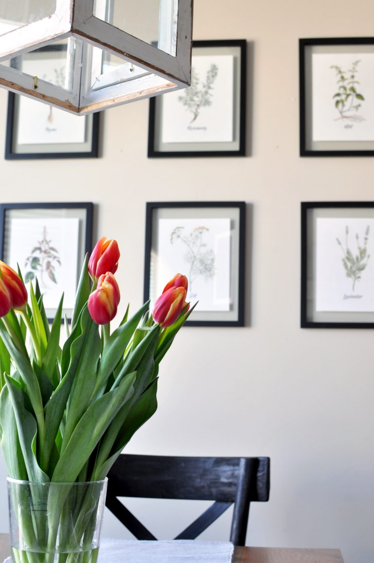 18 DIY Spring Home Ideas! Free Set of 6 Spring Herb Printables. Simple green herbs in black floating frames on the wall in rows.