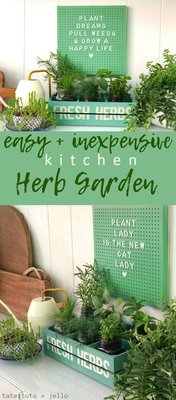 Create an easy and inexpensive kitchen herb garden with dollar spot items!