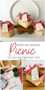 Picnic Friend and Neighbor Gift Idea, Printables and Protect My Squad Contest
