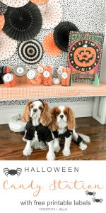 Halloween Trick-Or-Treat Candy Station Game with Free Printable Labels