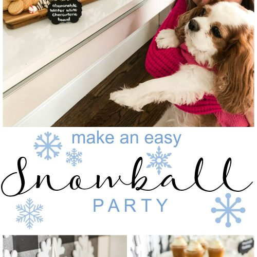 Plan a family movie night watching Abominable with an easy Snowball Party. Create an Abominable Charcuterie Dessert Board and Snowball Treats!