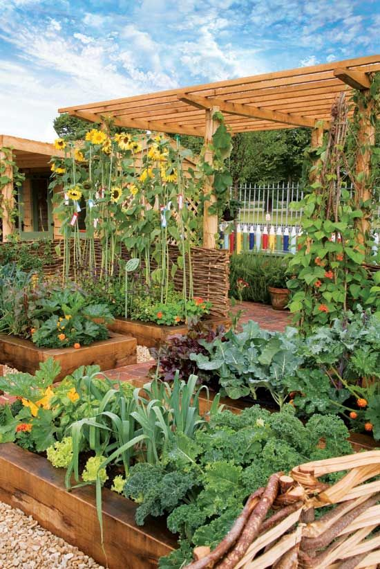 Raised Planter Garden Boxes at other Earth News