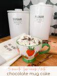 5-Minute Low Carb Keto Chocolate Mug Cake