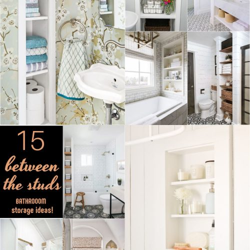 15 bathrooms with in between the studs shelves