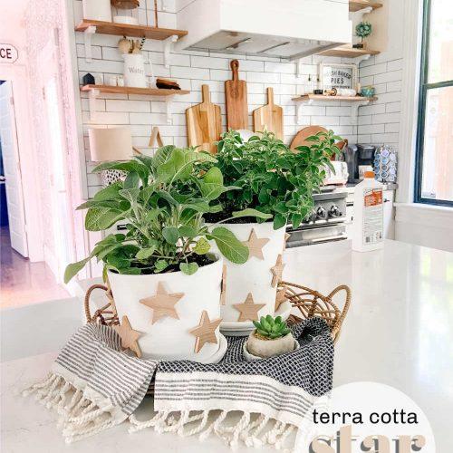 DIY Farmhouse Star Herb Pots