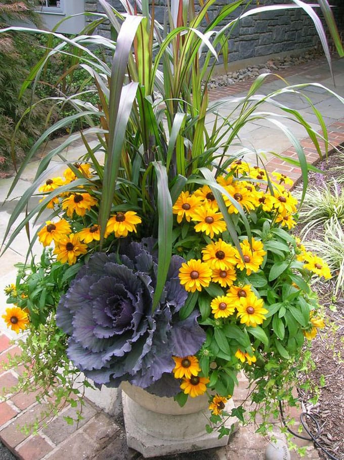 Fall Planter with Cabbage from A Piece of Rainbow